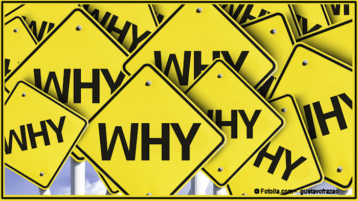 """The word """"why"""" written on multiple road signs"""