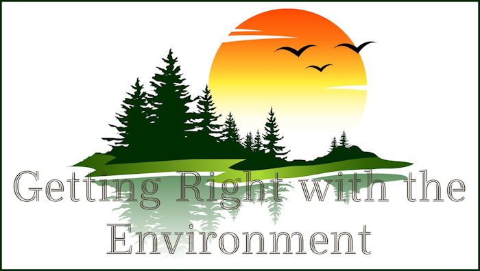 "Illustration of a small green island with evergreen trees and a large sun in the background with superimposed words: ""Getting Right with the Environment"""